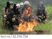 Купить «Firefighters of Fire Department of Federal Fire Service in Kamchatka Territory during fire extinguishing, training to overcome fire zone of psychological training for firefighters», фото № 32316726, снято 7 августа 2019 г. (c) А. А. Пирагис / Фотобанк Лори