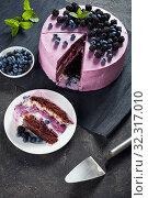 Купить «berry chocolate sponge cake with cream cheese», фото № 32317010, снято 13 июля 2019 г. (c) Oksana Zh / Фотобанк Лори