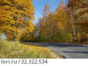 Купить «Осенний пейзаж с асфальтированной дорогой», фото № 32322534, снято 14 октября 2018 г. (c) Елена Коромыслова / Фотобанк Лори