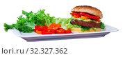 Delicious vegetarian hamburger with soybean patty and fresh vegetables. Стоковое фото, фотограф Яков Филимонов / Фотобанк Лори