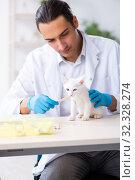 Купить «Young male doctor examining sick cat», фото № 32328274, снято 19 июля 2019 г. (c) Elnur / Фотобанк Лори