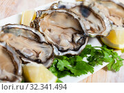 Купить «Seafood appetizer fresh oysters with lemon and parsley on white plate», фото № 32341494, снято 12 ноября 2019 г. (c) Яков Филимонов / Фотобанк Лори