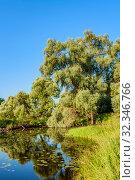 Купить «Маленькая лесная река и её  живописный берег ранним летним утром. Подмосковье.», фото № 32346766, снято 17 июля 2018 г. (c) Устенко Владимир Александрович / Фотобанк Лори