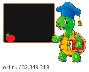 Turtle teacher theme image 4 - picture illustration. Стоковое фото, фотограф Zoonar.com/Klara Viskova / easy Fotostock / Фотобанк Лори