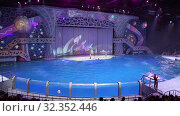 Купить «Presentation (Show) VDNKh Moskvarium - the biggest in Europe sea aquarium and entertainment center, Moscow, Russia», видеоролик № 32352446, снято 31 октября 2019 г. (c) Владимир Журавлев / Фотобанк Лори