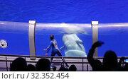 Купить «Presentation (Show) VDNKh Moskvarium - the biggest in Europe sea aquarium and entertainment center, Moscow, Russia», видеоролик № 32352454, снято 31 октября 2019 г. (c) Владимир Журавлев / Фотобанк Лори