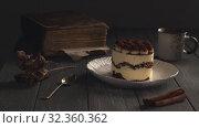 Купить «Appetizing Tiramisu dessert», видеоролик № 32360362, снято 31 марта 2020 г. (c) Данил Руденко / Фотобанк Лори