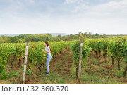 Купить «Девушка в джинсах стоит около виноградника. Осень», фото № 32360370, снято 5 октября 2019 г. (c) Наталья Гармашева / Фотобанк Лори