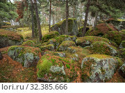 Купить «Huge stones covered with green moss and lichens», фото № 32385666, снято 2 ноября 2019 г. (c) Юлия Бабкина / Фотобанк Лори