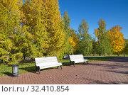 Купить «Золотая осень в городском парке», фото № 32410854, снято 12 октября 2018 г. (c) Елена Коромыслова / Фотобанк Лори