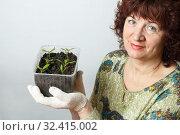Купить «A female gardener shows a pot with sprouts after a pick.», фото № 32415002, снято 3 апреля 2016 г. (c) Акиньшин Владимир / Фотобанк Лори