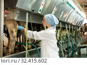 Купить «Woman in bathrobe working with automatical cow milking machines», фото № 32415602, снято 14 февраля 2020 г. (c) Яков Филимонов / Фотобанк Лори