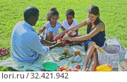 Купить «Portrait of cheerful interracial family with two children enjoying picnic on green meadow», видеоролик № 32421942, снято 16 ноября 2019 г. (c) Яков Филимонов / Фотобанк Лори