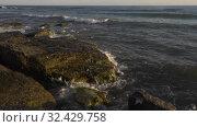 Купить «Каспийское море на закате. Волны набегают на скалистый берег. Caspian Sea at sunset. Waves run onto a rocky shore.», видеоролик № 32429758, снято 7 февраля 2019 г. (c) Евгений Романов / Фотобанк Лори