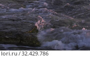 Каспийское море на закате. Волны набегают на скалистый берег. Caspian Sea at sunset. Waves run onto a rocky shore. Стоковое видео, видеограф Евгений Романов / Фотобанк Лори