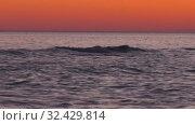 Купить «Каспийское море на закате. Волны набегают на скалистый берег. Caspian Sea at sunset. Waves run onto a rocky shore.», видеоролик № 32429814, снято 7 февраля 2019 г. (c) Евгений Романов / Фотобанк Лори