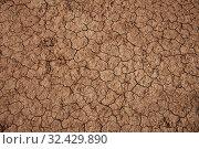 Dry cracked soil during drought. Стоковое фото, фотограф Михаил Коханчиков / Фотобанк Лори