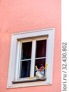Malerutensilien vor einem Fenster, Symbol für Renovierung, Instandsetzung, Pfusch. Стоковое фото, фотограф Zoonar.com/Erwin Wodicka / age Fotostock / Фотобанк Лори