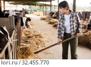 Купить «Portrait of active chinese female employee working in cowshed on farm», фото № 32455770, снято 29 мая 2019 г. (c) Яков Филимонов / Фотобанк Лори