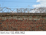 Barbed wire on top of a brick wall. Стоковое фото, фотограф Константин Колосов / Фотобанк Лори