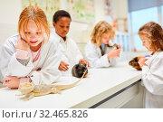 Gruppe Schüler im Biologie Unterricht beobachten und erforschen Tiere im Labor. Стоковое фото, фотограф Zoonar.com/Robert Kneschke / age Fotostock / Фотобанк Лори