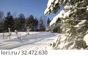 Купить «Снег падает с заснеженных веток елей в зимнем лесу», видеоролик № 32472630, снято 6 марта 2019 г. (c) Юлия Бабкина / Фотобанк Лори
