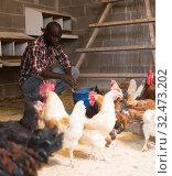 Купить «Man farmer with bucket feeding chickens at chicken-house», фото № 32473202, снято 6 августа 2019 г. (c) Яков Филимонов / Фотобанк Лори