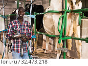 Купить «Young man working with automatical cow milking machines», фото № 32473218, снято 6 августа 2019 г. (c) Яков Филимонов / Фотобанк Лори
