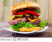 Купить «Tasty double-decker grilled hamburger with beef, tomato, cheese, cucumber», фото № 32497610, снято 3 июня 2020 г. (c) Яков Филимонов / Фотобанк Лори