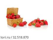 Ripe strawberries on a white background. Стоковое фото, фотограф Ласточкин Евгений / Фотобанк Лори