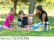 Семейное чаепитие на пикнике на газоне. Стоковое фото, фотограф Иванов Алексей / Фотобанк Лори