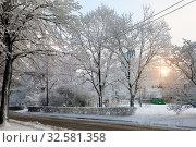 Купить «A small car road in a winter city among snowy trees. Saint-Petersburg, Russia», фото № 32581358, снято 17 января 2016 г. (c) Куликов Константин / Фотобанк Лори