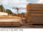 Stacks of boards on timber mill warehouse. Стоковое фото, фотограф Tryapitsyn Sergiy / Фотобанк Лори