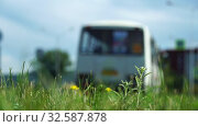 Car, bus rides on road. Blurred background. Close up shot, focused on grass in foreground. Summer day, car traffic in provincial town. Handheld shoot near roadside (2018 год). Стоковое видео, видеограф Dmitry Domashenko / Фотобанк Лори