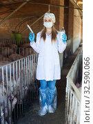 Купить «Female veterinarian in facial mask with syringe», фото № 32590066, снято 23 февраля 2020 г. (c) Яков Филимонов / Фотобанк Лори