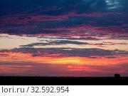 Купить «Romantic sunset with black grass silhouette», фото № 32592954, снято 4 апреля 2020 г. (c) easy Fotostock / Фотобанк Лори
