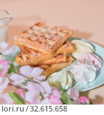Купить «Sweet delicious dessert, homemade baked goods for breakfast. Belgian soft waffles on a blue plate with fresh milk and meringues on a peach-colored background in pastel tone», фото № 32615658, снято 30 ноября 2019 г. (c) Светлана Евграфова / Фотобанк Лори