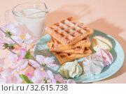 Купить «Sweet delicious dessert, homemade baked goods for breakfast. Belgian soft waffles on a blue plate with fresh milk and meringues on a peach-colored background in pastel tone», фото № 32615738, снято 30 ноября 2019 г. (c) Светлана Евграфова / Фотобанк Лори