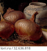 Купить «Eugène Jansson, Still Life with Onions, Still Life with bulbs, painting, still life, 1882, Oil on canvas, Height, 27 cm (10.6 inches), Width, 33.5 cm (13.1 inches), Signed, Eug, Jansson 1882», фото № 32636818, снято 16 июля 2019 г. (c) age Fotostock / Фотобанк Лори