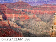 Amazing grand canyon national park north part. Стоковое фото, фотограф Zoonar.com/matthieu gallet / easy Fotostock / Фотобанк Лори