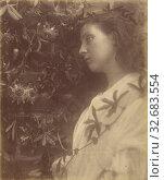 Купить «Maud There has Fallen a splendid Tear From the Passion Flower at the Gate, Julia Margaret Cameron (British, born India, 1815 - 1879), Freshwater, Isle...», фото № 32683554, снято 17 июня 2019 г. (c) age Fotostock / Фотобанк Лори