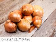 Pile of raw onion, bulbs lying on rough timber surface. Стоковое фото, фотограф Кекяляйнен Андрей / Фотобанк Лори
