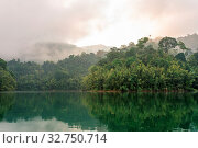 Купить «The national park Khao Sok with the Cheow Lan Lake is the largest area of virgin forest in the south of Thailand. Limestone rocks, jungle and karst formations determine the picture of the Park», фото № 32750714, снято 7 июня 2020 г. (c) easy Fotostock / Фотобанк Лори