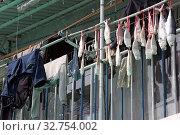 Купить «Hong Kong, China, fish are hanging on a clothesline next to clothes to dry», фото № 32754002, снято 9 декабря 2017 г. (c) Caro Photoagency / Фотобанк Лори