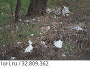 Купить «Forest pollution, plastic garbage in the pinewood. Dump plastic debris in pine tree forest. Dump garbage in woods of Ukraine. Environmental plastic pollution is ecological problem.», фото № 32809362, снято 13 декабря 2019 г. (c) Некрасов Андрей / Фотобанк Лори
