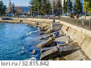 Купить «Краснодарский край, Туапсе, вид на городскую набережную», фото № 32815842, снято 19 декабря 2019 г. (c) glokaya_kuzdra / Фотобанк Лори