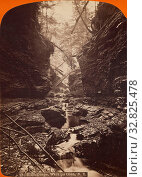 Купить «Elfin Gorge, Watkins Glen, N.Y., James Douglas Hope (American, 1846 - 1929), 1868–1878, Albumen silver print», фото № 32825478, снято 17 июня 2019 г. (c) age Fotostock / Фотобанк Лори