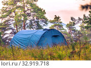 Купить «A blue tourist tent stands in a pine forest on the grass against a cloudy sky.», фото № 32919718, снято 15 сентября 2019 г. (c) Акиньшин Владимир / Фотобанк Лори
