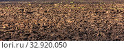 Купить «Agricultural land cultivated for sowing. Plowed field.», фото № 32920050, снято 22 сентября 2019 г. (c) Акиньшин Владимир / Фотобанк Лори