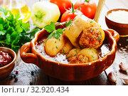 Купить «Stuffed paprika with meat», фото № 32920434, снято 26 июля 2019 г. (c) Надежда Мишкова / Фотобанк Лори